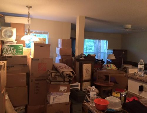 Tales from Box Mountain: Part 1 – Life and Business Lessons Learned by Moving Across Country